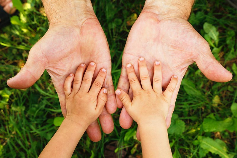 Your Complete Guide to Child Custody in Canada | Verhaeghe Law Office
