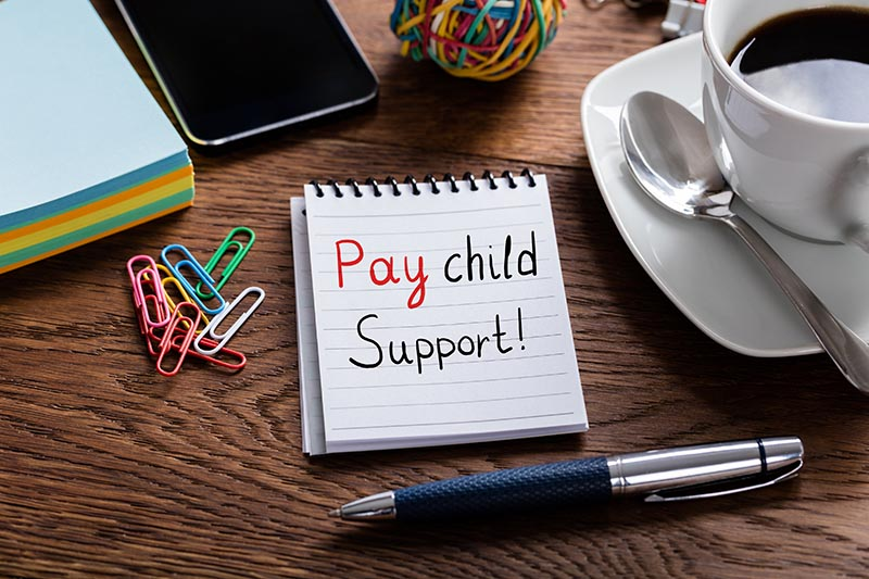 What are the Alberta Child Support Guidelines?