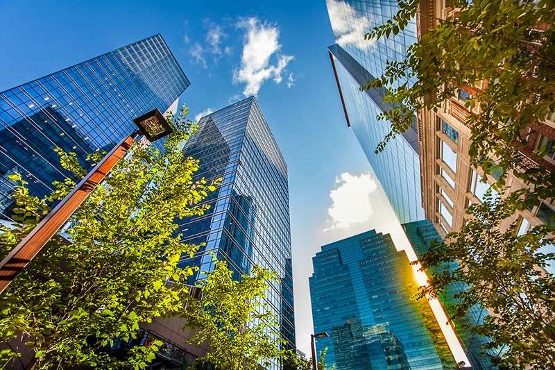 Things to Look For in a Commercial Lease